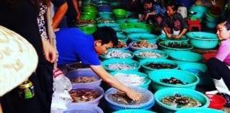 địa chỉ mua hải sản tươi sống ở Đà Nẵng