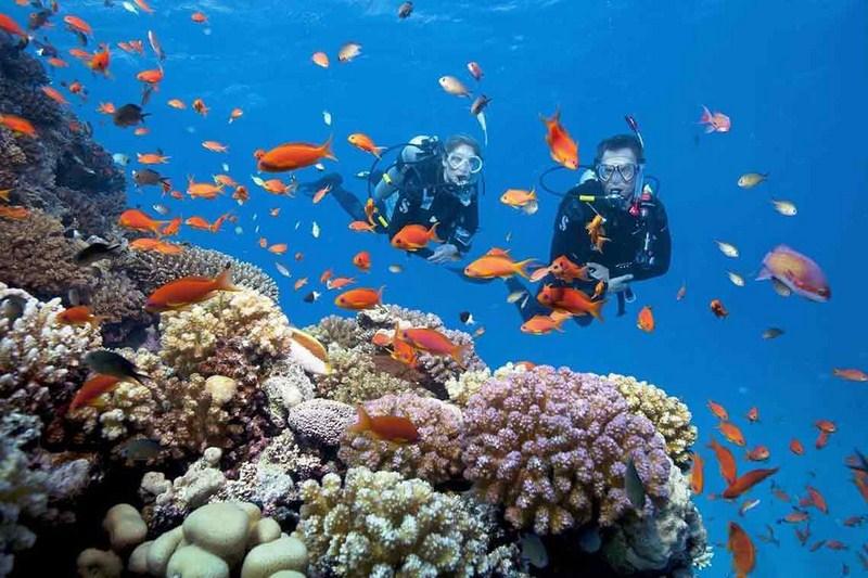 đảo Hòn Mun Nha Trang
