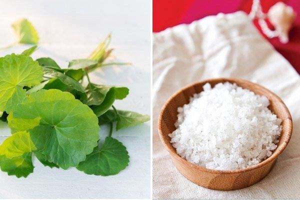 Cách chế biến bột rau má