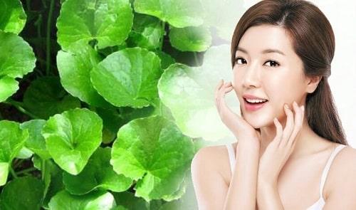 Bột rau má có tác dụng gì cho da mặt