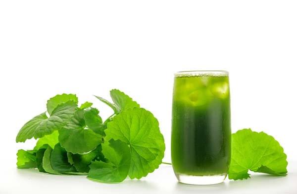 Uống bột rau má có tác dụng gì
